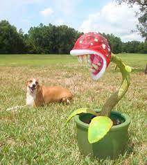mario piranha plant lawn ornament classic gaming general