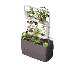 supragarden hydroponic system kits with 2 plantsteps green wall