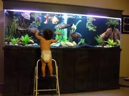 300 gallon monster freshwater aquarium for the home pinterest
