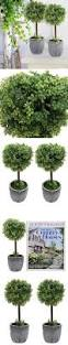 Lighted Topiary Trees Set Of 2 Small Realistic Artificial Boxwood Topiary Trees Faux