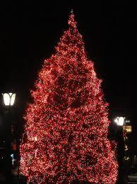park square tree lighting ceremony