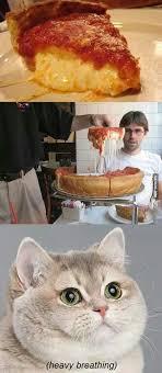 Cat Heavy Breathing Meme - heavy breathing cat meme food google search furry critters