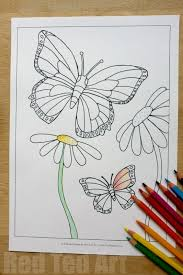 free butterfly colouring pages for spring u0026 summer red ted art u0027s