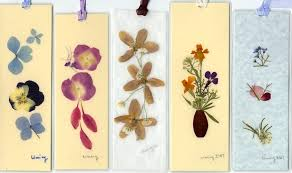 pressed flowers 9 creative project ideas for pressed flowers the garden glove