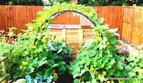 veg garden planner australia best idea garden