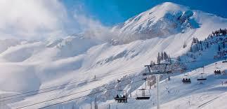mountain stats alta ski area alta ski area alta utah