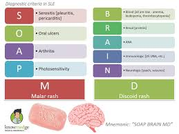 sle report card this is mnemonics diagnostic criteria for sle soap brain md
