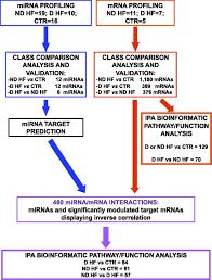 microrna dysregulation in diabetic ischemic heart failure patients