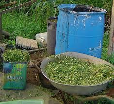 cara membuat cairan hidroponik harga nutrisi hidroponik organik dan cara membuat alternatifnya