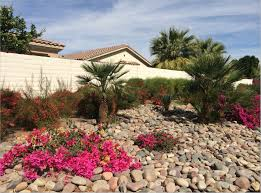 landscaping desert landscaping ideas front yard walkways