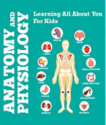 Human Physiology And Anatomy Book Amazon Com Anatomy Book Learn About Your Body Parts Edition