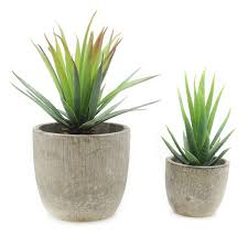 Amazoncom Velener Mini Home Decoration Artificial Plants Aloe - Home decoration plants