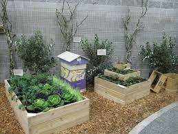 gardening blogs america u0027s largest gardening social network