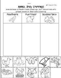 hibernate or migrate sorting worksheet freebie teaching