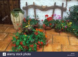 spanish courtyard garden stock photo royalty free image 1325568