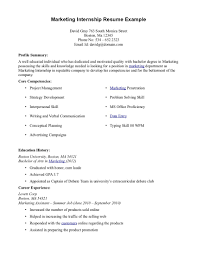Resume Core Qualifications Examples by Computer Science Internship Resume Objective Professional Resume