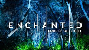 enchanted forest of light tickets descanso gardens enchanted forest of light los angeles tickets n