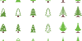 techlife today the secrets of christmas tree selection and care