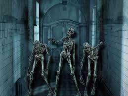 halloween scary wallpaper horror skeleton skull weird halloween scary skull wallpaper at