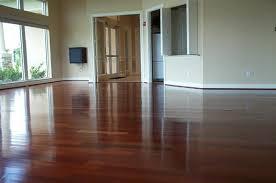 cat urine hardwood floor stain removal