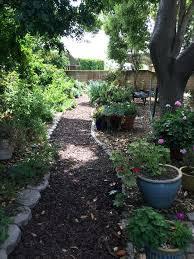 alternatives to grass in backyard alternative to grass in backyard airdreaminteriors com