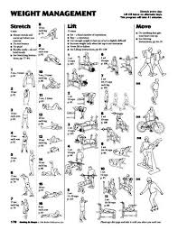 Bench Workout Routine Dumbbell Workout Routines For Beginners Eoua Blog