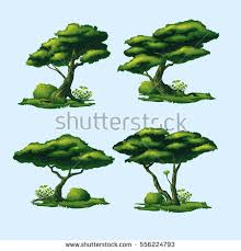 high quality trees curved crown isolated stock vector 556224793
