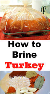 how to brine a turkey a step by step guide for bringing turkey and
