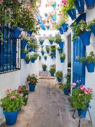private tour to the popular patios of córdoba