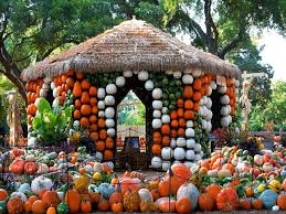 Local Pumpkin Patches Top 10 U S Pumpkin Patches Travel Channel