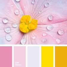 887 best colors walls images on pinterest colors colour