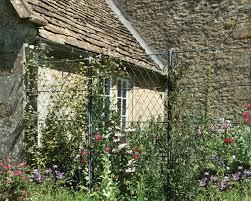 diamond lattice trellis panels with climbing plants garden