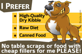 best dog food for pitbulls to satisfy their nutritional needs