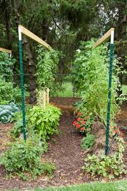 gardening ideas best 20 straw bale gardening ideas on pinterest hay bale