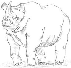 animals outline drawing free download clip art free clip art
