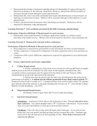 Resume Summary Statement Examples Entry Level by 2401 Syllabus