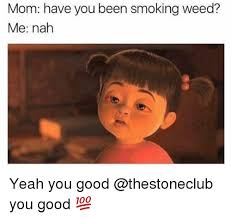 Memes About Smoking Weed - mom have you been smoking weed me nah yeah you good you good