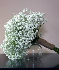 babys breath delicate baby s breath collection bridal flowers to go