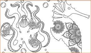 colorier la pieuvre et l u0027hippocampe créapassions