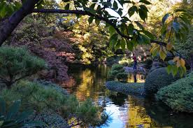 Botanical Gardens Ft Worth Fort Worth Botanic Garden Japanese Garden Albany Kid Family Travel