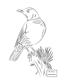 red robin birds robins coloring pages for kids colorpages7 com