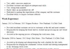 Bank Teller Objective Resume Examples by Download Resume For Bank Teller Haadyaooverbayresort Com