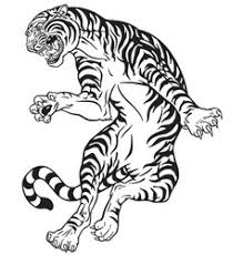 tiger black and white royalty free vector image