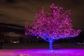 drop down christmas lights big shot christmas lights we supply all the led lights