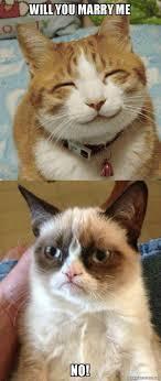 No Grumpy Cat Meme - grumpy cat will you marry me no grumpy cat vs happy cat