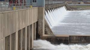 state says asian carp plan too expensive activists say u0027don u0027t