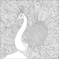 wonders of creation coloring book illustrations to color and