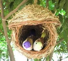 rattan bird cages home garden decoration pet supplies birds home