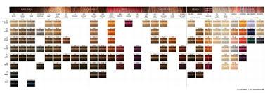 igora royal hair color color to develiper ratio schwarzkopf swatch hair reference pinterest hair reference