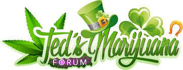tmf st patrick u0027s day logo teds marijuana forum